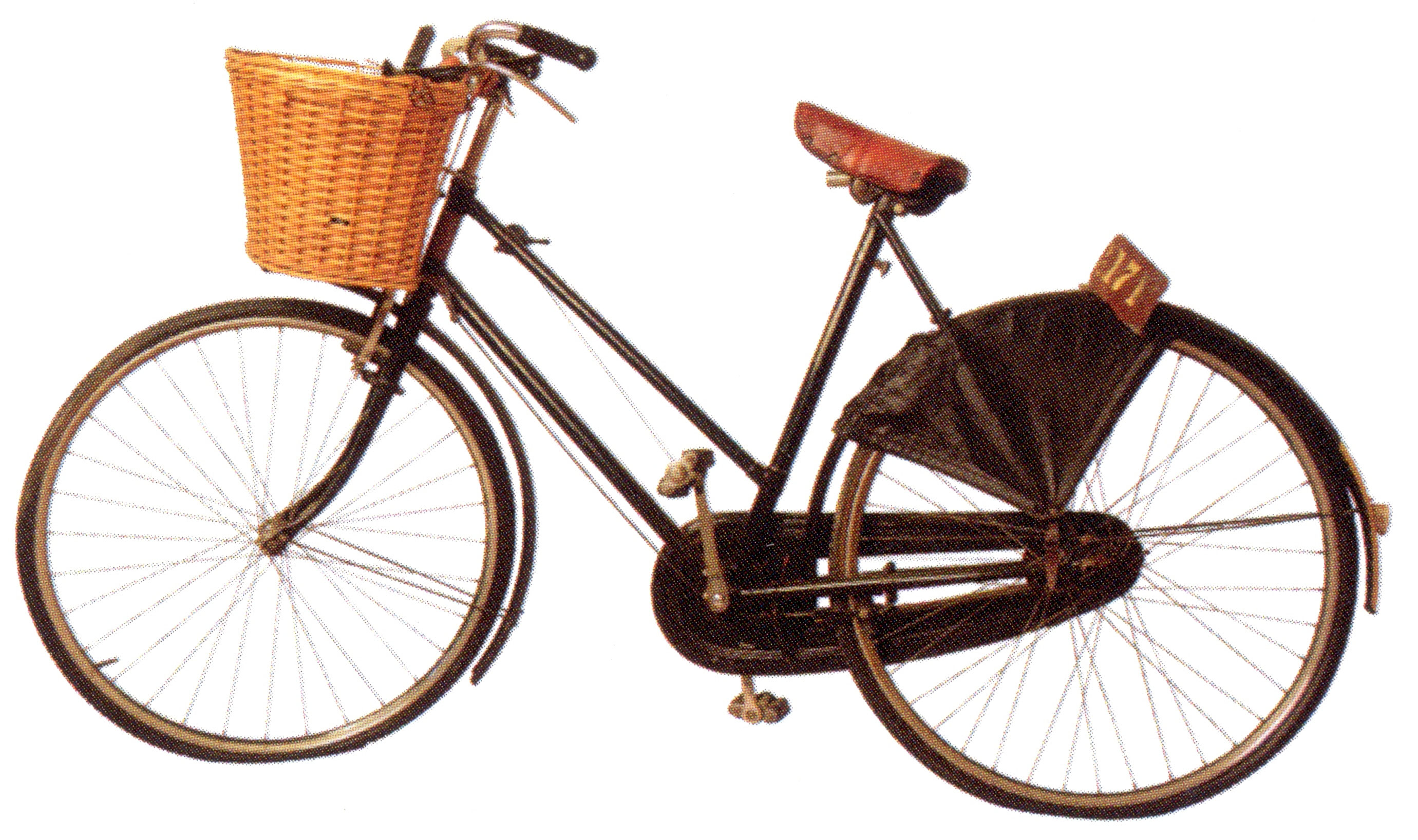 Mary Peabody's Bicycle
